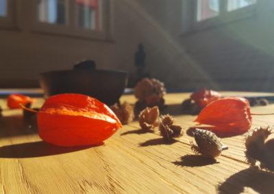 Mandala - automne - cours de yoga - yoki - neuchatel