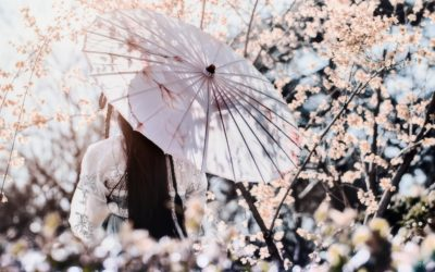 Yin Yoga & Acupuncture – accueillir le printemps avec Sarah Geiser-Lemoine – samedi 15 février 2020
