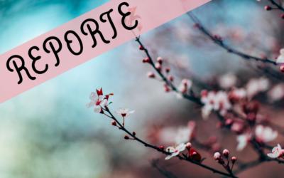 Yin Yoga & Acupuncture – accueillir le printemps avec Sarah Geiser-Lemoine – reporté en 2021